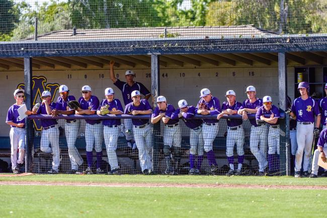 NCS baseball roundup: Amador Valley advances in EBAL tournament, and more